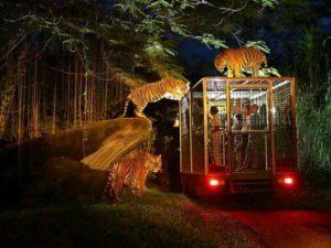 Рантамбор – самый популярный сектор парка