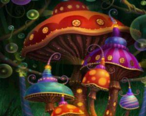 Наркотики и галлюциногенные грибы на острове Бали