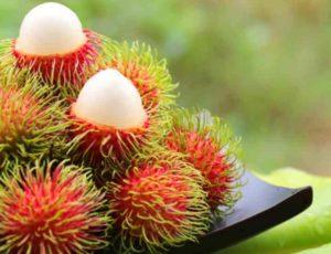 Урожай этого фрукта собирают с мая по октябрь.